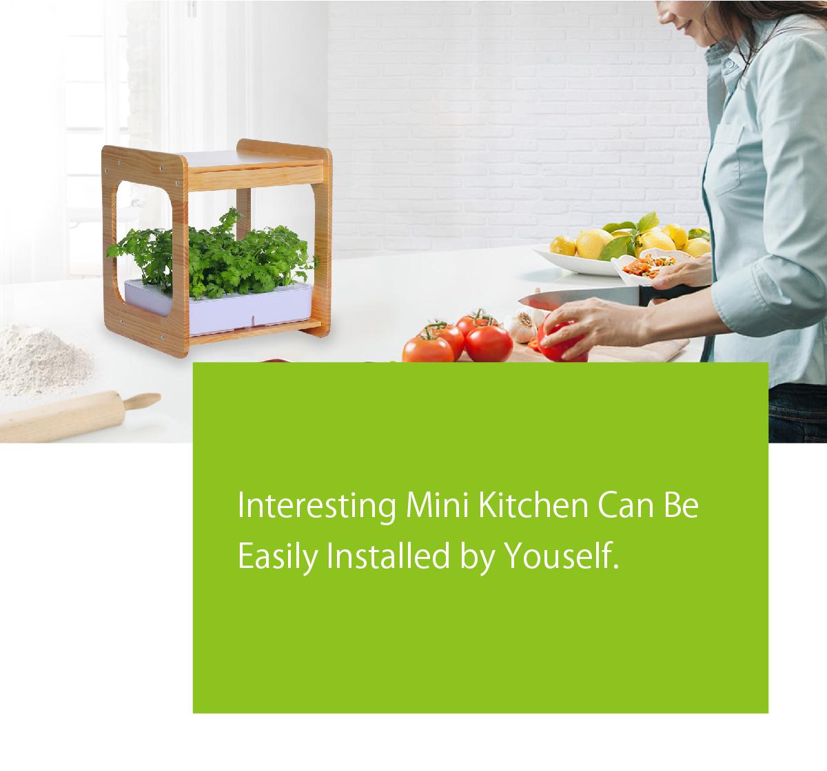 indoor gardening, kitchen gardening, growyourownfood, herbs, basil, lettuce