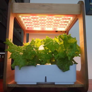 hydroponic garden, aeroponic, indoor led, grow lights, fresh herbs and veggies